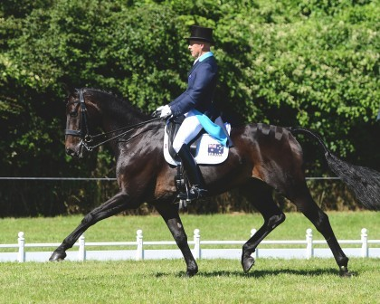 Image for Andrew Hoy takes the lead after Dressage at Leg 4