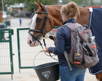 Image for Equistro Groom Competition Results