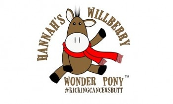 Hannah's Wilberry Wonder Pony Charity